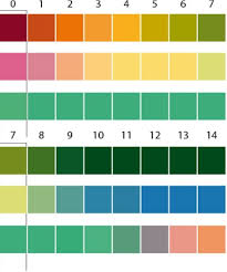 Color Chart For Universal Indicator Ph 4 7 5 Universal Indicator Strips Mayswood Labs