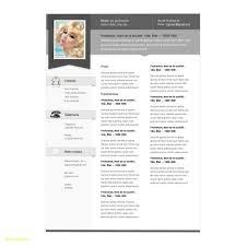 23 Pages Mac Resume Templates Bcbostonians1986 Com