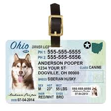 Id Tags And Ohio Wallet Driver Personalized Card License 1 Cute Pet Pooch Dog