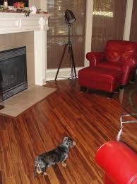 morning star golden zebra strand bamboo flooring reviews flooring