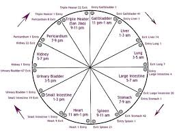Chinese Medicine Five Elements Chart Body Clock Traditional Chinese Medicine Five Elements