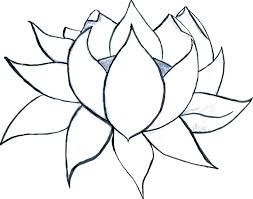 Flowers Coloring Pages For Adults Cool Flower Coloring Pages Large