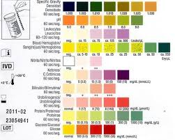 Multistix Color Chart Dipstick Urinalysis Litfl Ccc Investigations