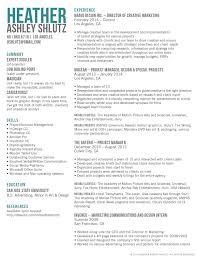 Marketing Resume Templates Resume Template Marketing Director Therpgmovie 52