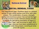 our national animal tiger short essay
