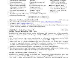 Unusual Senior Security Consultant Resume Images Example Resume