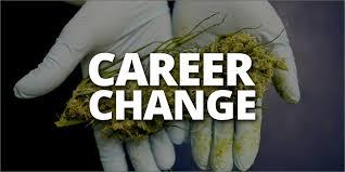 i need a career change need a career change here are 10 jobs in marijuana industry