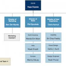 Business Organizational Chart Template Bire1andwap 163694984028
