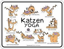 Katzen Sprüche Yoga Fun Schilder 22x17