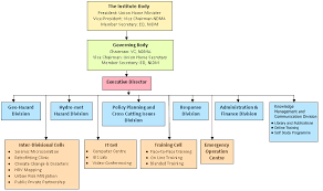 Management Structure Organizational Overview