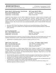 Federal Resume Exa Superb Federal Resume Templates Free Career