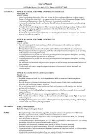 Director Engineering Resumes Senior Manager Software Engineering Resume Samples Velvet