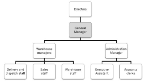 Whs Organization Chart Bsbwhs605 Develop Implement And Maintain Whs Management Systems