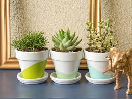 small plants for office. Succulents In Office Areas Small Plants For