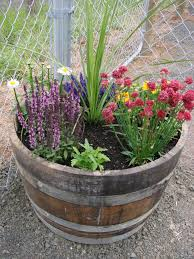 barrel garden. Gardens Barrel Garden