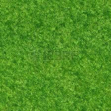Grass Texture Stock Photos Royalty Free Grass Texture Images