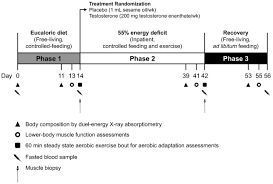 Army Body Fat Chart 2018 Effects Of Testosterone Supplementation On Body Composition