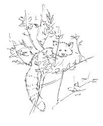 Small Picture Red Panda Coloring Pages Miakenasnet