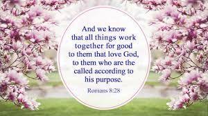 Image result for spring image with bible verse