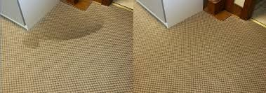 residential eco friendly dry carpet cleaning