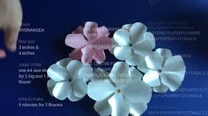 Paper Flower Video Hydrangea Paper Flower Video Tutorial_how To Make A Paper Flower