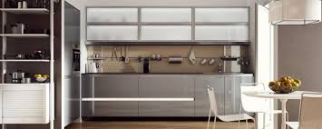 Marvelous Modern Glass Cabinet Doors with Modern Cabinet Doors For