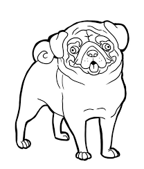 600x700 pug pug funny face coloring page art face
