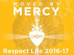 respect life program respect life
