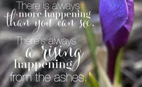 Beauty Ashes Quotes Best Of Beauty For Ashes Quotes Mr Quotes