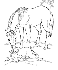 Small Picture Horse coloring page Mare and her sleeping foal Horse stuffde