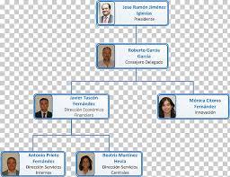 Organizational Chart Working Group Volkswagen Cuidar Nuestro
