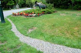 how to remove standing water from your yard