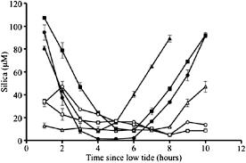 Dom Quantity And Quality Dynamics Of Plum Island Ecosystem