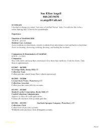 Objective Statement In A Resume Simple Cna Resume Sample No Experience Examples Of A Bank Resumes Objective