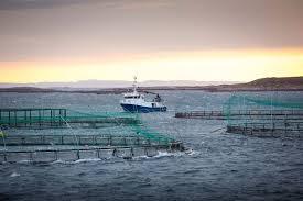 pon power pon equipment coastal and aquaculture