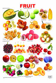tropical fruit names. Delighful Fruit Fruit Chart 6 Exotic Fruitstone Fruit  Click Image To Close In Tropical Names L