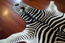 zebra skin rug no felt trophy zebra skin rug real zebra skin rug zebra skin rug