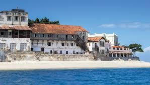 Tanzanie - Zanzibar - Epoustouflante incursion dans le royaume animal -  Michel Voyages