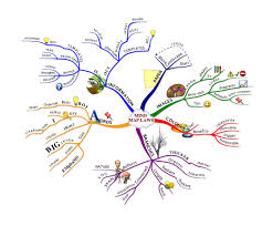 why you should ditch the list mind mapping for the whole brain mind mapping examples mind mapping examples for students