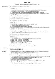 Planning Consultant Sample Resume Transport Planning Resume Samples Velvet Jobs 19