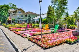 larchmont nurseries inc a complete garden center