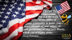 George Washington Quote Impressive Cherish The Constitution Quote By George Washington Cox's Honey
