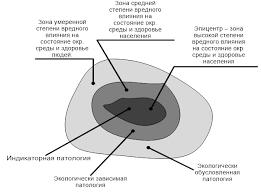 Реферат Общие принципы почвенно экологического мониторинга  Рисунок 1 Структура очага социально экологического напряжения Гичев Ю П 2002