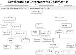 Animal Classification Chart Invertebrates Vertebrates And Invertebrates Classification