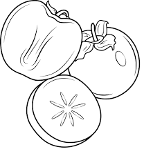 Coloriage Kaki Fruit Imprimer