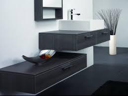 Reece Bathroom Cabinets Bathroom Vanity Wall Mounted