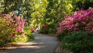 central florida gardens you can visit