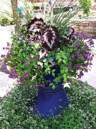 container gardens to suit your style