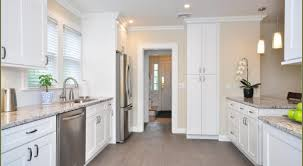 Small Picture 47 White Kitchen Cabinets And Antique White Kitchen Cabinets We