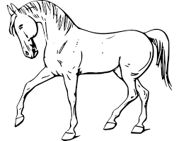 template horse horse template animal templates free premium templates
